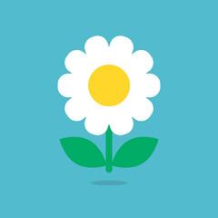 Daisy icon vector isolated