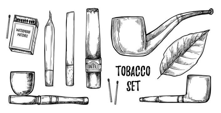 Hand drawn vintage vector illustration - tobacco collection. Des