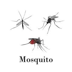 Mosquitoes silhouette vector set on a white background