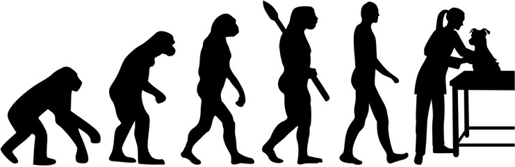 Female veterinarian evolution