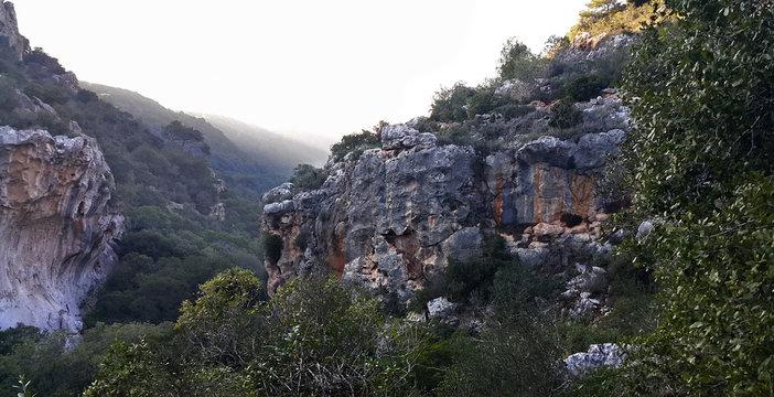 Mount Carmel.