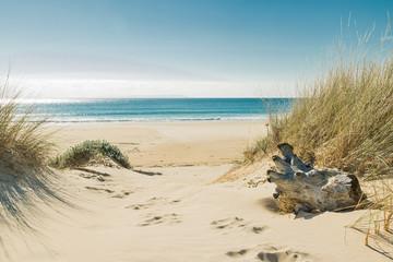 Aluminium Prints Beach Bolonia beach