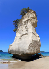unique rock formation at cathedral cove beach