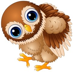 Cute baby owl cartoon walking