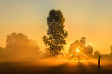 Beautiful sunrise  from Thailand