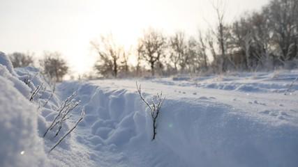 road sunlight trail in the snow winter landscape beautiful golf snowing sun glare nature