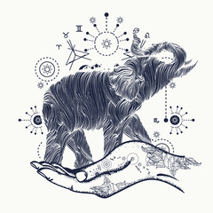 Elephant in the hands tattoo art. Elephant sacral style t-shirt
