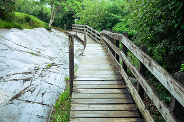 Wooden Footbridge, Foggy Nature, Way Nature, Footbridge Nature, Path Woods, Path Forest, Footbridge