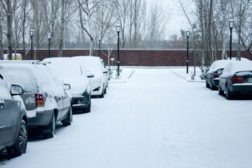 Fototapeta parking cars after snowfall