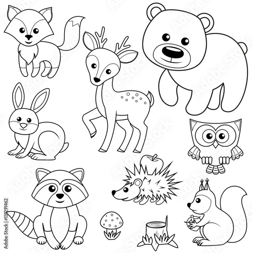 Forest woods page background coloring pages Woodland animals coloring book