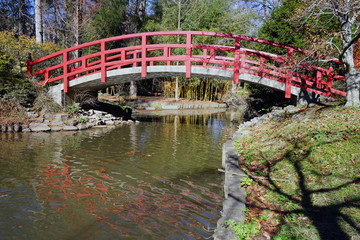 Red bridge in a Japanese tea garden on the campus of Duke University Wall mural