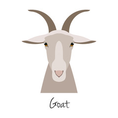 Vector goat head isolated. Flat, cartoon style object