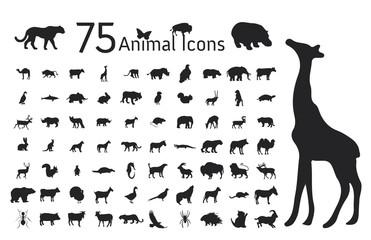 Set of 75 Animal icons