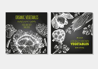 Vegetables vintage design template. Square banners set. Hand-drawn vector illustration