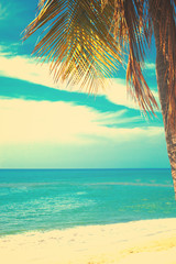 Vintage summer beach with palm tree
