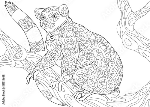 Stylized Wild Lemur Madagascar Mammal Animal Freehand Sketch For Adult Anti Stress Coloring Book