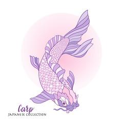 Japanese carp. Stock line vector illustration. This illustration
