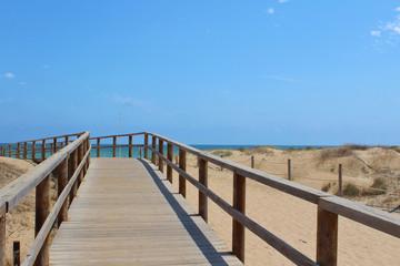 Dunas de Guardamar y la Marina, Alicante