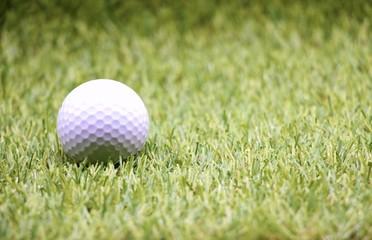 golf ball on green grass