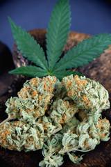 Detail of cannabis buds arrangement (mango puff strain) with pot