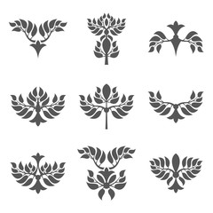 Set of abstract foliate elements. Deciduous ornament. Pattern.