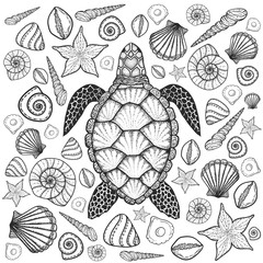 Sea turtle and shells in line art style. Hand drawn vector illus