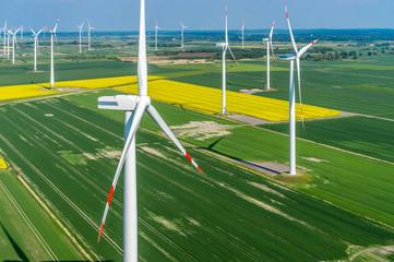 Windenergieanlage Luftbild in einem Windpark zur Rapsblüte