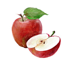 Watercolor Apples on a white background. Sliced fruit.  Peeled half apple.  Red apple illustration.