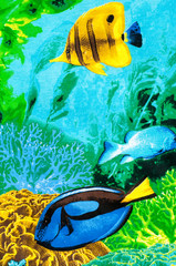 Texture, background. Fabric cotton ocean marine inhabitants Line