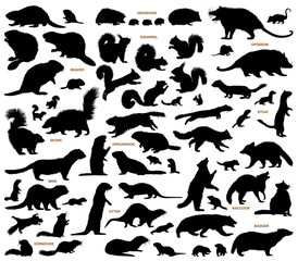 Small mammals of the northern lands vector silhouettes collection