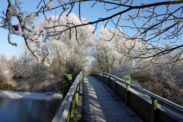 Schulzbrücke über die Dove Elbe im Winter