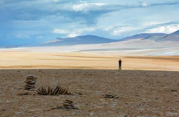 Highland desert plateau Altiplano, Bolivia