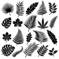Set of leaves. Vector