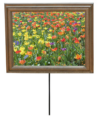 Composite image of isolated spring flowers in a standing picture frame. Vertical.