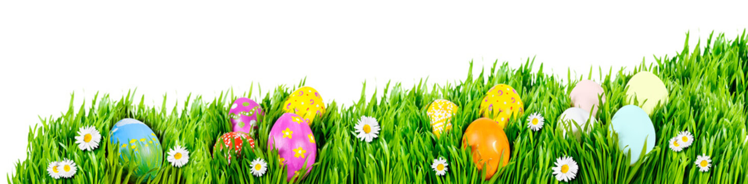 Nests of decorated Easter eggs, nestled in grass nests