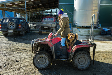 Adult woman working in a dairy farm with her dog