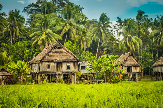 Houses in Palembe