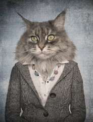 Papiers peints Animaux de Hipster Cat in clothes. Concept graphic in vintage style.