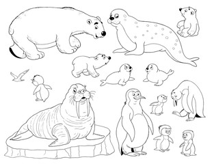 Set of cute arctic animals. Coloring page. Penguins, walrus, white bears, seals