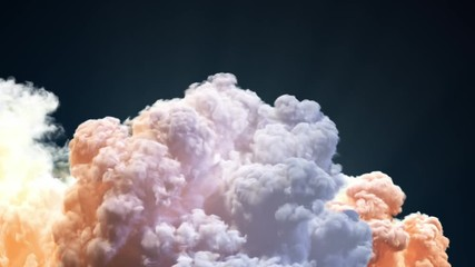 Fotomurales - Space Shuttle In The Clouds Of Smoke. 3D Animation.