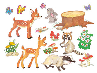 Set Of Cute Woodland Animals Coloring Page Forest Birds Deer