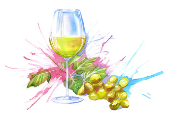 Glass cup of a white wine and grape.Drink painting.Watercolor hand drawn illustration.