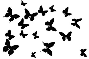 Black butterfly on a white background. Texture winged insects isolated. Nature in black and white. A lot of butterflies flying.