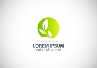 round green leaf organic eco logo