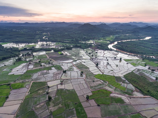 Aerial view of Rice field and green grass in Thailand