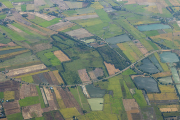 Arial view of green rice field