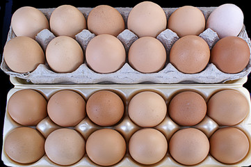 Crates of Brown Eggs
