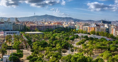Green park with palmtrees in Barcelona, Spain