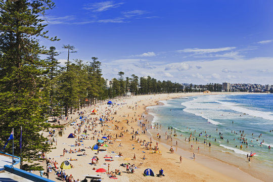Sy Manly Beach Above Day