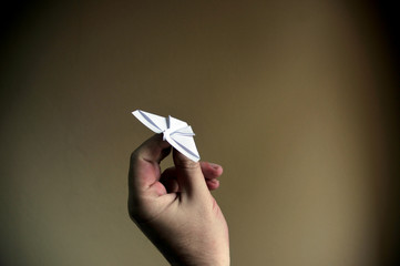 Hands of man, paper plane.